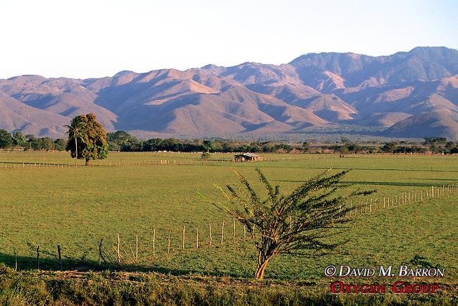 Scenic On Way To Izabal