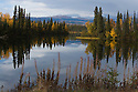 Dragon Lake in fall at the North Canol Road, Yukon, Canada
