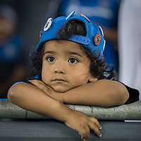 SAN JOSE, CA - SEPTEMBER 25: Young Earthquakes fan during a game between Philadelphia Union and San Jose Earthquakes at Avaya Stadium on September 25, 2019 in San Jose, California.