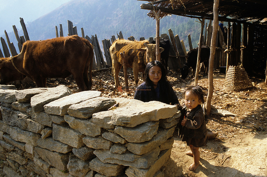 Portrait of farmer child with cow