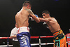 hoganAmir Khan vs v Julio Diaz - Sheffield - 27th April 2013