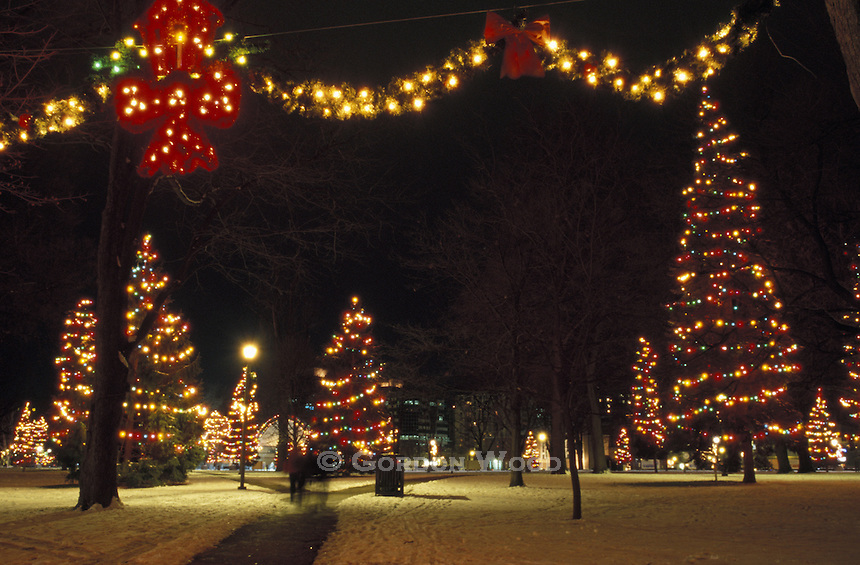 Christmas Lights Display - Victoria Park, London, Canada