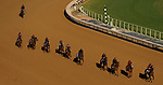 October 31, 2019: The Aidan O'Brien contingent exercises in preparation for the Breeders' Cup World Championships at Santa Anita Park in Arcadia, California on October 31, 2019. John Voorhees/Eclipse Sportswire/Breeders' Cup/CSM