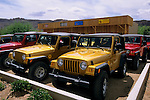Jeep Rentals lot, Moab, UTAH