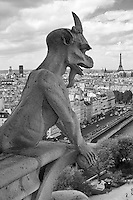 Gargoyle, Norte Dame, Paris, France