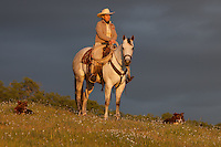 Female rancher on her horse with companion dogs at the top of a hill at Sunset near Mariposa, California, USA