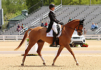 LEXINGTON, KY - April 27, 2017. #30 Spring Easy and Caroline Martin from the USA finish in 11th place on the first day of Dressage at the Rolex Three Day Event at the Kentucky Horse Park.  Lexington, Kentucky. (Photo by Candice Chavez/Eclipse Sportswire/Getty Images)