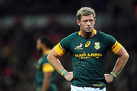 Rohan Janse van Rensburg of South Africa looks on during a break in play. Killik Cup International match, between the Barbarians and South Africa on November 5, 2016 at Wembley Stadium in London, England. Photo by: Patrick Khachfe / JMP