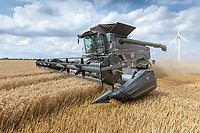Massey Ferguson Ideal 9T<br /> &copy;Tim Scrivener Photographer 07850 303986<br />      ....Covering Agriculture In The UK....