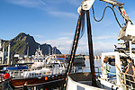 Fishing boats in the harbour at Svolvaer, Lofoten Islands, Nordland, Norway