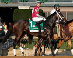 """October 07, 2018 : #1 Tiger Moth and jockey Florent Geroux in the 63rd running of The Juddmonte Spinster (Grade 1) $500,000 """"Win and You're In Breeders' Cup Distaff Division"""" at Keeneland Race Course on October 07, 2018 in Lexington, KY.  Candice Chavez/ESW/CSM"""
