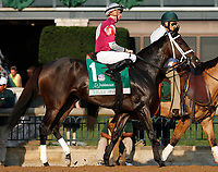 "October 07, 2018 : #1 Tiger Moth and jockey Florent Geroux in the 63rd running of The Juddmonte Spinster (Grade 1) $500,000 ""Win and You're In Breeders' Cup Distaff Division"" at Keeneland Race Course on October 07, 2018 in Lexington, KY.  Candice Chavez/ESW/CSM"