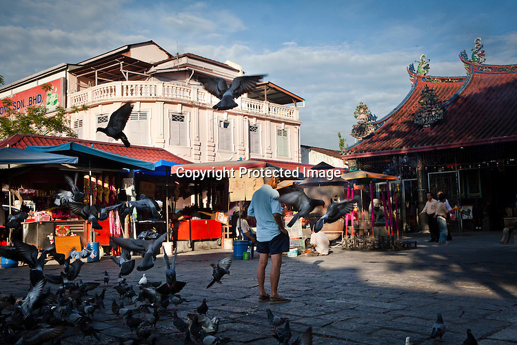 An old man feeds the pigeons at the Goddess of Mercy temple in capital Georgetown of Penang, Malaysia. Photo: Sanjit Das/Panos