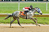 Victory Ghost winning at Delaware Park on 5/12/12