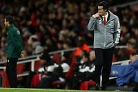 28th November 2019; Emirates Stadium, London, England; UEFA Europa League Football, Arsenal versus Frankfurt; A dejected Arsenal Manager Unai Emery frustrated after Daichi Kamad of Eintracht Frankfurt scores for 1-2 - Editorial Use