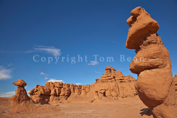 Eroded rock formations, hoodoos, at Goblin Valley State Park, Utah, AGPix_1911