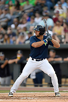 Left fielder Tim Tebow (15) of the Columbia Fireflies bats in a game against  the Charleston RiverDogs on Friday, June 9, 2017, at Spirit Communications Park in Columbia, South Carolina. Columbia won, 3-1. (Tom Priddy/Four Seam Images)