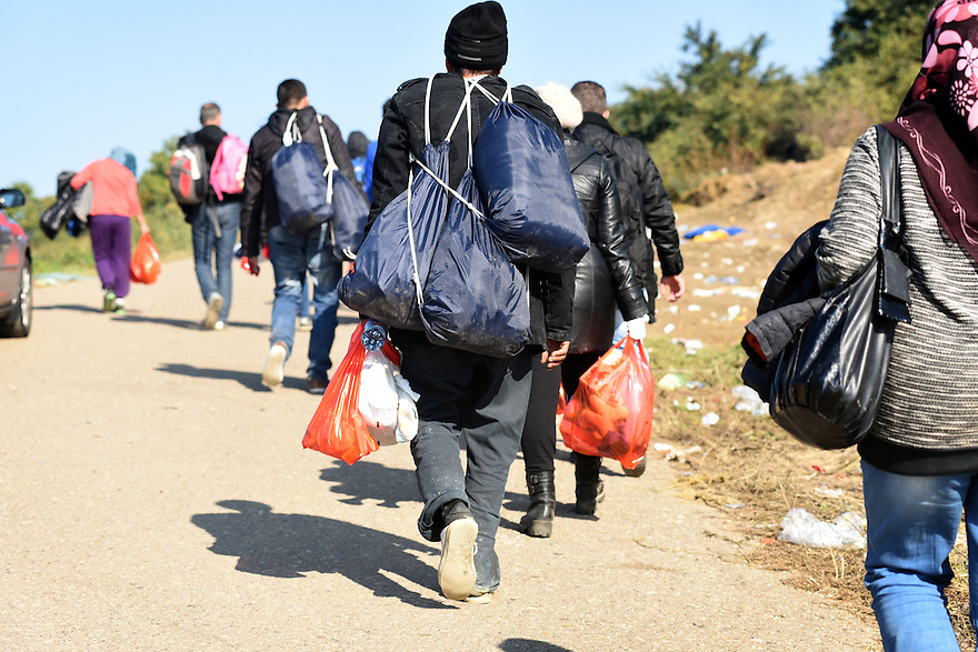 REFUGEES MAKE THEIR WAY TO THE CROATIAN BORDER CROSSING IN SERBIA NEAR THE VILLAGE OF BERKASOVO . 24/10/2015. PHOTO BY CLARE KENDALL.