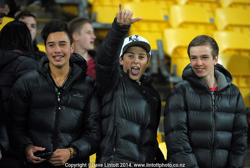 Fans in the grandstand during the Four Nations rugby league final between the NZ Kiwis and Australia Kangaroos at Westpac Stadium, Wellington on Saturday, 15 November 2014. Photo: Dave Lintott / lintottphoto.co.nz