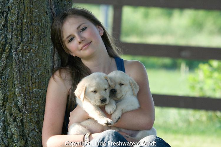 Teenage girl holding two yellow Labrador retriever (AKC) puppies