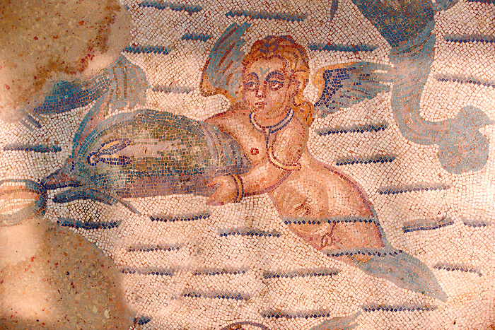 Cupid swimming with a dolphin. Roman mosaics at the Villa Romana del Casale which containis the richest, largest and most complex collection of Roman mosaics in the world. Constructed  in the first quarter of the 4th century AD. Sicily, Italy. A UNESCO World Heritage Site.