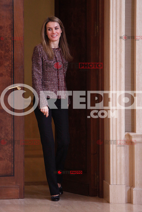 Princess Letizia of Spain attend several audiences at Palacio de la Zarzuela in Madrid, Spain. January 17, 2013. (ALTERPHOTOS/Caro Marin) /NortePhoto