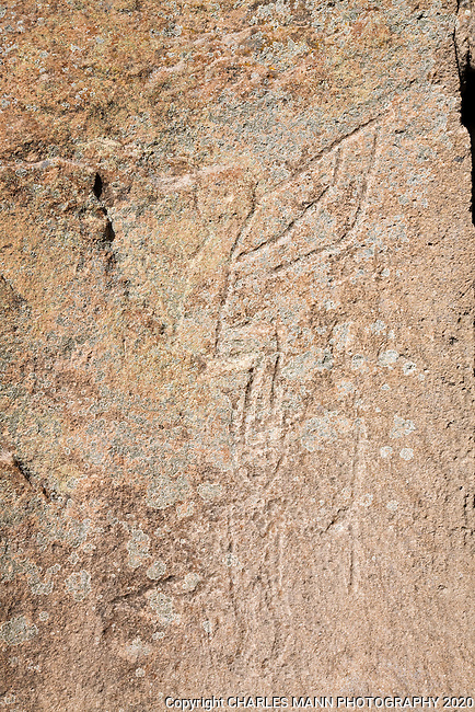 A faded petroglyph of a Kokopelli can be seen by sharp eyed hikers along the trail at Tsankawi, a part of Bandelier National Monument near the New Mexico towns of White Rock and Los Alamos.