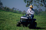 Woman on lawn tractor near Amador City, Sierra Foothills, Amador County, California