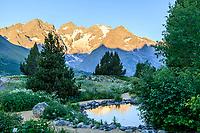 France, Hautes-Alpes (05), Villar-d'Arène, jardin alpin du Lautaret, reflet de la Meije sur un plan d'eau le matin