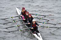 Crew: 254  Rob Roy  Event: Girls CHAMP quads<br /> <br /> Schools' Head of the River 2017<br /> <br /> To purchase this photo, or to see pricing information for Prints and Downloads, click the blue 'Add to Cart' button at the top-right of the page.