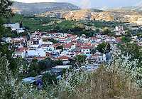 Stock image of Omodos village from above, wild shrubs overlooking Troodos mountain and Omodos village.