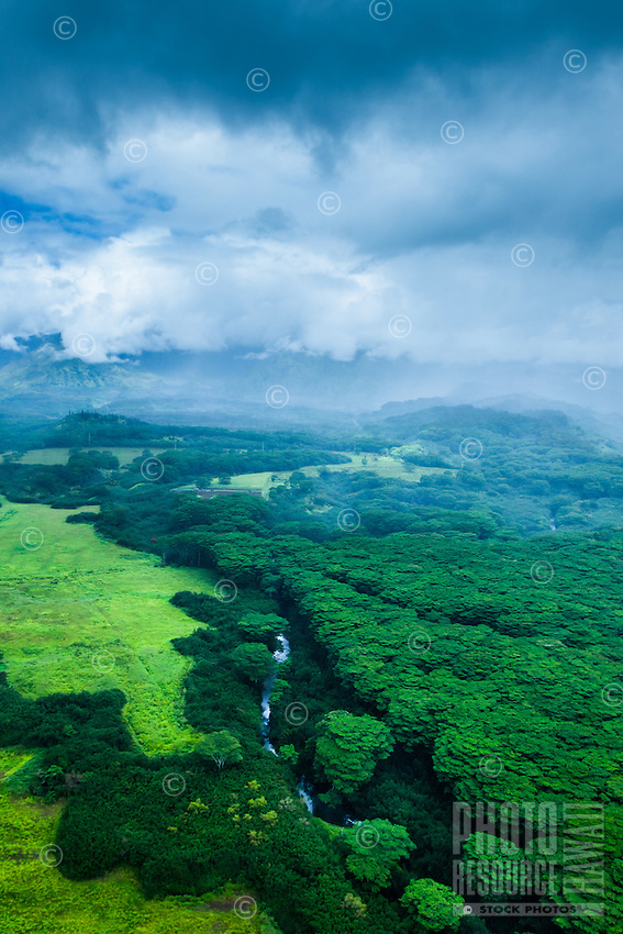 An aerial view of a river coursing through lush Kaua'i vegetation on an overcast day.