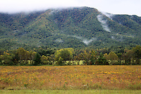 Smoky mountain hills covered in fall colors seen from a meadow in cades cove valley.