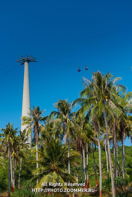 Phu Quoc Cabel Car Mast Among Palms, Vietnam