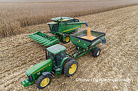 63801-12608 Harvesting corn and unloading into grain cart in fall-aerial  Marion Co. IL