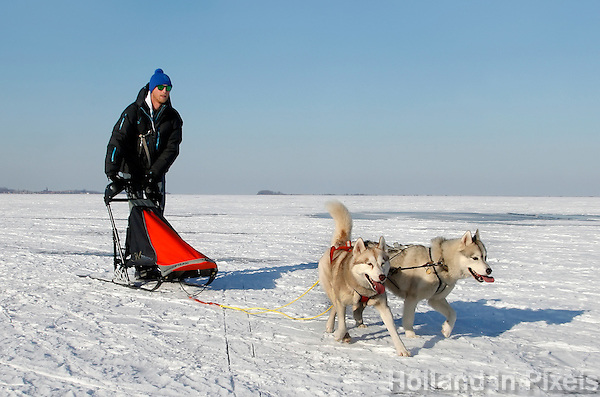 Bevroren Gouwzee. Man met sledehonden