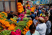 A Mexican flower market vendor sells bunches of marigold flowers (Flor de muertos) for Day of the Dead holiday in Mexico City, Mexico, 31 October 2016. Marigold flowers (Cempasúchil) are used to adorn graves and altars during the Day of the Dead (Día de Muertos). A syncretic religious holiday, combining the death veneration rituals of the ancient Aztec culture with the Catholic practice, is celebrated throughout all Mexico. Based on the belief that the souls of the departed may come back to this world on that day, people gather at the gravesites in cemeteries, praying, drinking and playing music, to joyfully remember friends or family members who have died and to support their souls on the spiritual journey.