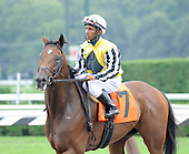 Khurkuri wins the third race at Saratoga on Aug. 26, 2009 for jockey Rajiv Maragh and trainer Christophe Clement.