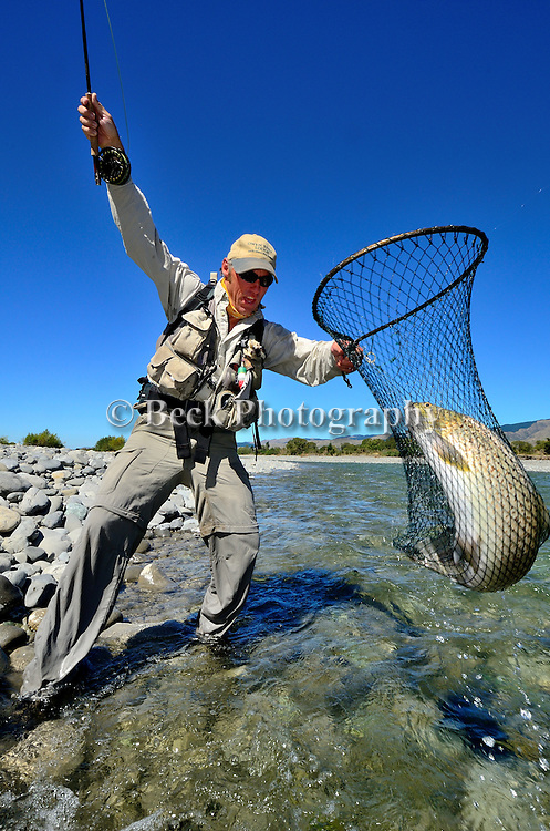 Aaron Ford Brown trout in New Zealand
