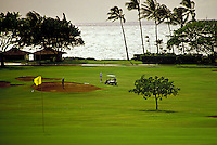 At Kaanapali Golf course with palm trees and ocean. Maui