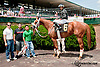 Bellezza Rosso winning at Delaware Park on 7/6/13