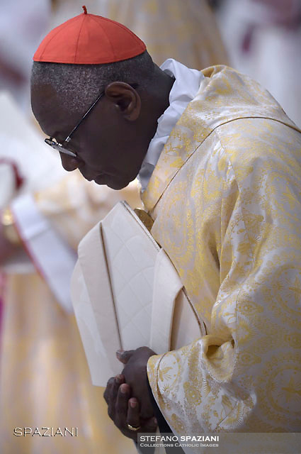 Cardinal Robert Sarah. Pope Francis mass. the Solemnity of Epiphany at St Peter's basilica at the Vatican. January 6, 2018