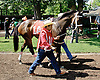 Thirteen Arrows before at Delaware Park on 7/17/14