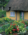 County Limerick, Ireland<br /> Thatched roof cottage with flowering gardens in the village of Adare