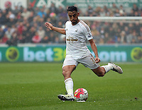 Neil Taylor of Swansea City during the Barclays Premier League match between Swansea City and Liverpool at the Liberty Stadium, Swansea on Sunday May 1st 2016