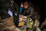 Snow Leopard (Panthera uncia) biologist, Shannon Kachel, veterinarians, Ric Berlinski and Mairam Tolukaeva, collaring male snow leopard, Sarychat-Ertash Strict Nature Reserve, Tien Shan Mountains, eastern Kyrgyzstan
