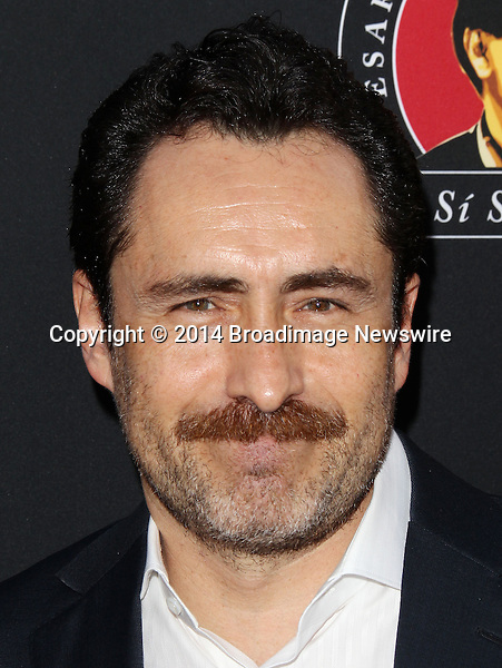 Pictured: Damian Bichir<br /> Mandatory Credit &copy; Frederick Taylor/Broadimage<br /> Premiere Of Pantelion Films And Participant Media's &quot;Cesar Chavez&quot; - Arrivals<br /> <br /> 3/20/14, Hollywood, California, United States of America<br /> <br /> Broadimage Newswire<br /> Los Angeles 1+  (310) 301-1027<br /> New York      1+  (646) 827-9134<br /> sales@broadimage.com<br /> http://www.broadimage.com