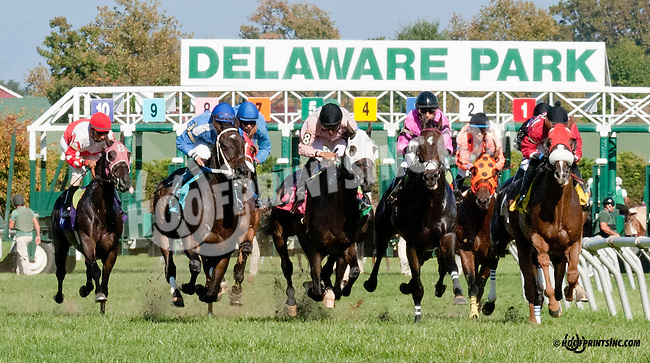 Sky Above winning at Delaware Park on 9/26/13