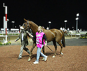 Premeptive Strike at the Meadowlands.