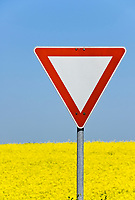 DEU, Deutschland, Bayern, Niederbayern: Rapsfeld, Verkehrszeichen Vorfahrt achten | DEU, Germany, Bavaria, Lower Bavaria, canola field, give way sign, yield sign